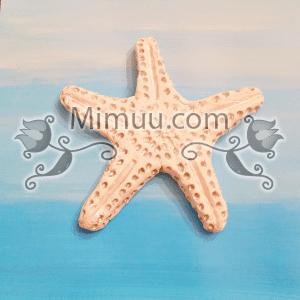 Karbonat Hamuru ile Deniz Yıldızı Yapılışı 3