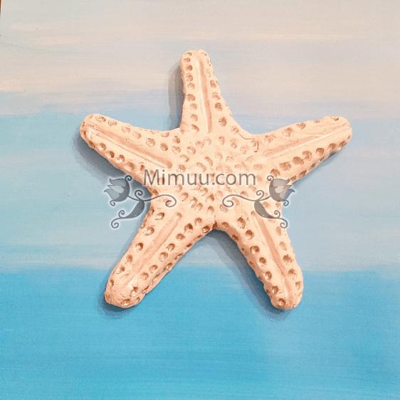 Karbonat Hamuru Ile Deniz Yıldızı Yapılışı 3 Mimuucom