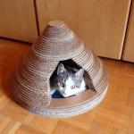 Kartondan Kedi Evi Nasıl Yapılır ? 3