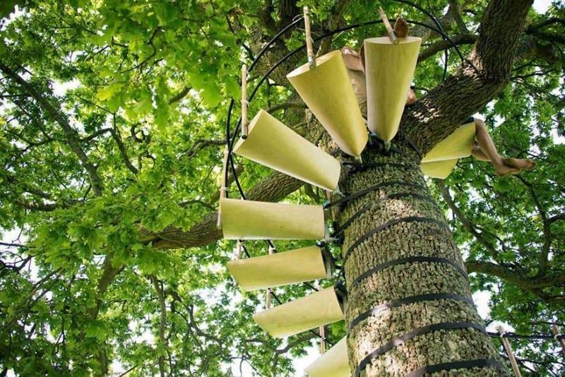 Ağaç Merdiveni 4