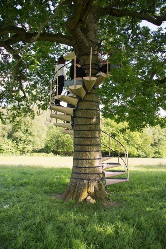 Ağaç Merdiveni 5