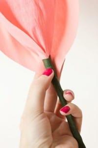 DIY, Krep Kağıt İle Gül Yapılışı 9