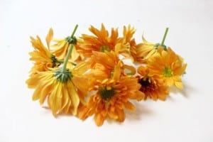 Ev Dekorasyonu Çiçek Düzenleme 2