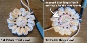 Tığ İşi Kırçiçeği Bebek Battaniyesi 1