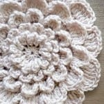 Tığ İşi Kırçiçeği Bebek Battaniyesi 2