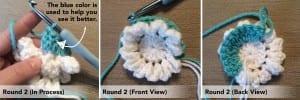 Tığ İşi Kırçiçeği Bebek Battaniyesi 4