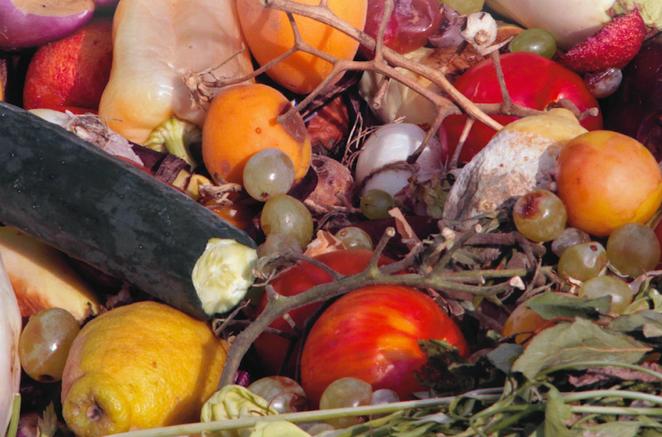 Bozulmuş Gıdalar Nasıl Anlaşılır?