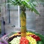 Meyve Tabağı Resimleri 6