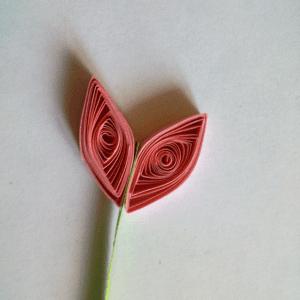 Quilling Sanatı Yaprak Modeli Yapılışı 9