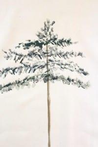 Çam Ağacı Nasıl Çizilir ? 9