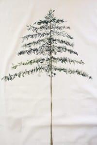 Çam Ağacı Nasıl Çizilir ? 15