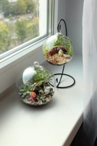 Minyatür Bahçe Yapılışı