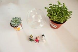 Minyatür Bahçe Yapılışı 11