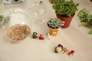 Minyatür Bahçe Yapılışı 13