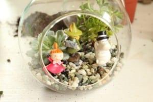 Minyatür Bahçe Yapılışı 1