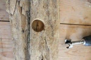 Minyatür Bahçe Nasıl Yapılır ? 6