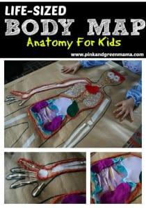 Okul Öncesi Vücudumuz Sanat Etkinlikleri