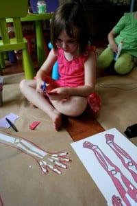 Okul Öncesi Vücudumuz Sanat Etkinlikleri 7