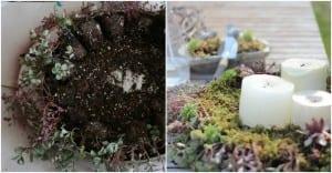 Minyatür Bahçe Mumluk Yapılışı 7