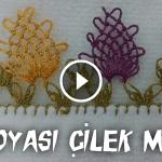 Videolu, İğne Oyası Çilek Modeli Yapılışı