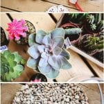 +75 Küçük Hobi Bahçeleri, Hayal Bahçeleri 31