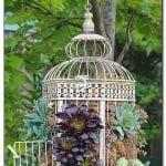 +75 Küçük Hobi Bahçeleri, Hayal Bahçeleri 53