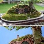+75 Küçük Hobi Bahçeleri, Hayal Bahçeleri 65