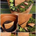 +75 Küçük Hobi Bahçeleri, Hayal Bahçeleri 71