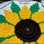 Penye İpten Ayçiçeği Paspas Yapımı 1