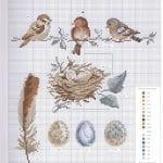 Etamin Şablonları Kuş Desenleri 96