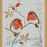 Etamin Şablonları Kuş Desenleri 27
