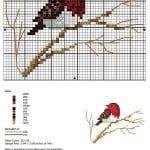 Etamin Şablonları Kuş Desenleri 46