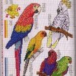 Etamin Şablonları Kuş Desenleri 47