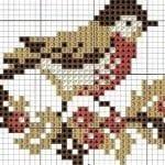 Etamin Şablonları Kuş Desenleri 51
