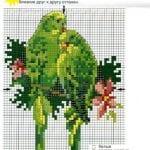 Etamin Şablonları Kuş Desenleri 59