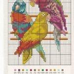 Etamin Şablonları Kuş Desenleri 65