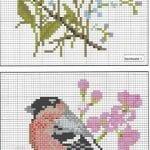 Etamin Şablonları Kuş Desenleri 73