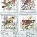 Etamin Şablonları Kuş Desenleri 80