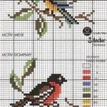 Etamin Şablonları Kuş Desenleri 87