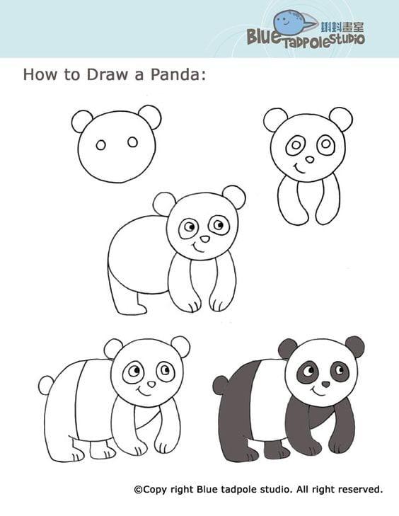 Hayvan Resimleri Nasıl Çizilir? 24