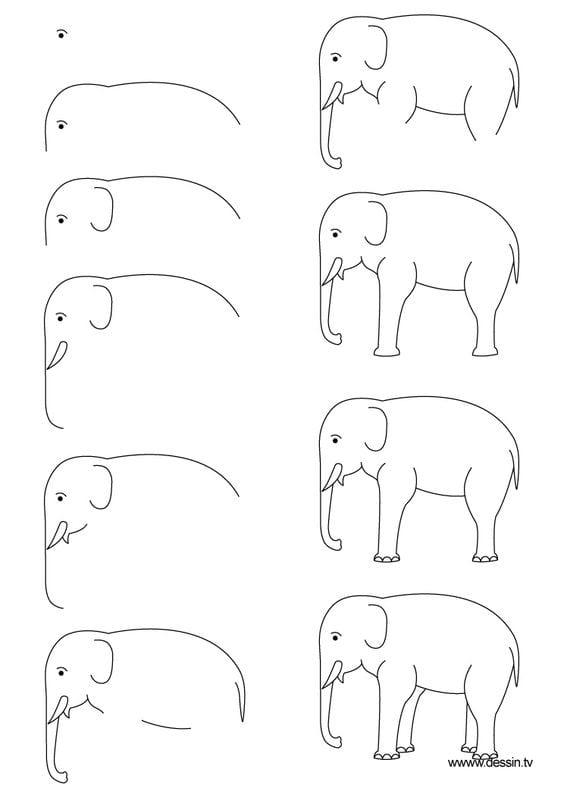 Hayvan Resimleri Nasıl Çizilir? 49