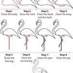Hayvan Resimleri Nasıl Çizilir? 52