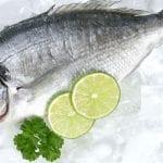 Balıklar Taze Bir Şekilde Nasıl Saklanmalı?