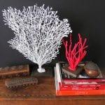 DIY, Dekoratif Mercan Yapılışı