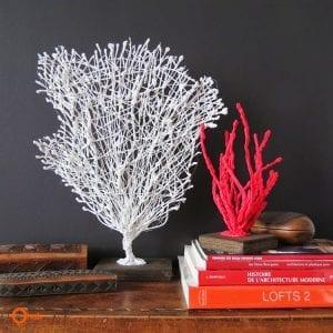 DIY, Dekoratif Mercan Yapılışı 1