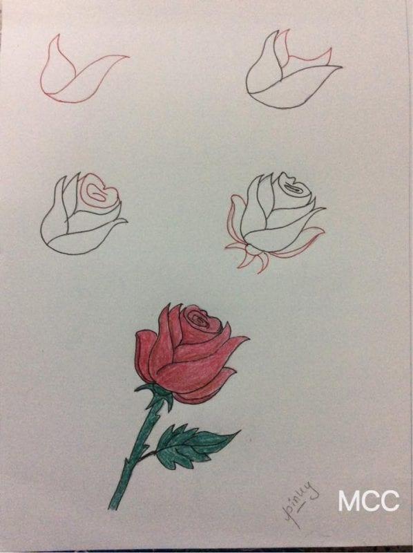 Adım Adım Kolay Çiçek Çizme 6
