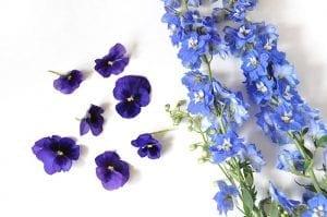 DIY, Canlı Çiçekten Çanta Yapılışı 16