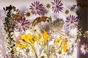 DIY, Canlı Çiçekten Pano Yapılışı 10