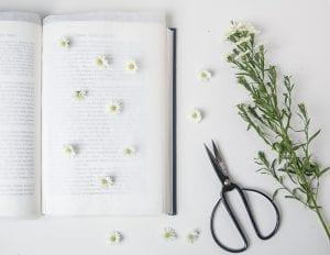 DIY, Canlı Çiçekten Pano Yapılışı 2