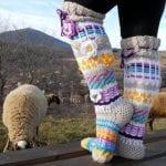 El Örgü Çorap Modelleri ve Örnekleri 16